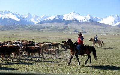 Geschichten aus Kirgistan – DRK launcht Multimediastory